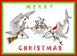 Holiday Shark