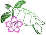 Turtle Hibiscus