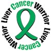 Liver Cancer Warrior