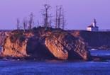 Cape Arago