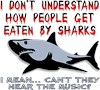 Funny Shark Sayings