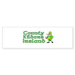 County Kildare, Ireland Rectangle Sticker (Bumper 50 pk)