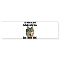 Can I keep him??? Sticker (Bumper 50 pk)