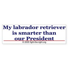 My labrador retriever is smarter (bumper sticker) Sticker (Bumper 50 pk)