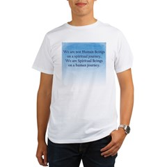 Spiritual Journey Organic Men's T-Shirt