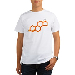 TESTOSTERONE SYMBOL Organic Men's T-Shirt