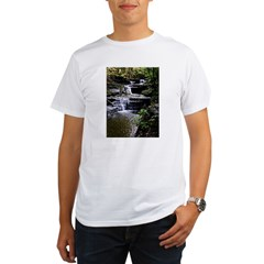 Buttermilk Falls Organic Men's T-Shirt