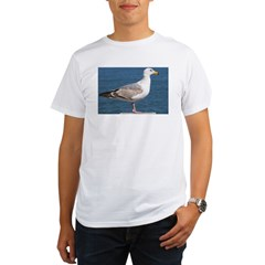 Seagull Photo Organic Men's T-Shirt