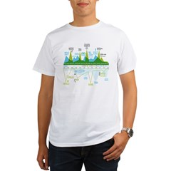 2010: The Organic Men's T-Shirt