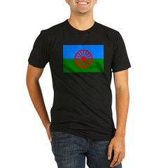 Romani Flag (Gypsies Flag) Organic Men's Fitted T-Shirt (dark)
