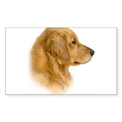 Golden Retriever Portrait Oval Sticker (Rectangle)