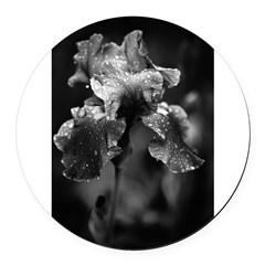 Irises Round Car Magnet