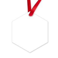 Oy with the Poodles Hexagon Ornament