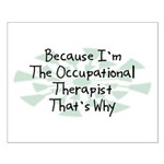 Because Occupational Therapist Small Poster
