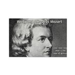 Music, Genius and Mozart Rectangle Magnet (10 pack